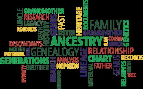 genealogy family tree